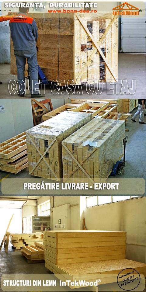 Case din lemn tip framing, sarpante, mansarde