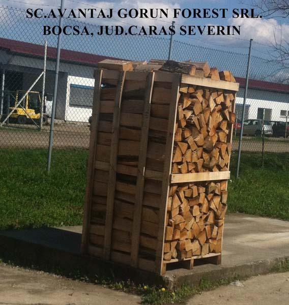 Vand lemn de foc la metru 38 euro/tona