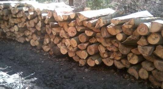 lemn de foc paletizat (58 euro) si lemn de foc la metru 38 euro
