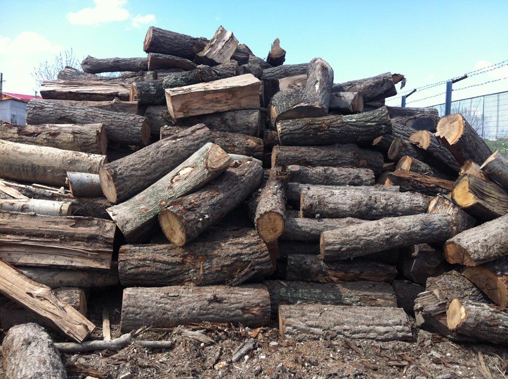 Lemn de foc paletizat (58 euro) si lemn de foc la metru 38 euro(mc)