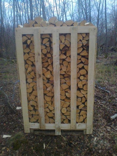 Vindem lemn de foc de carpen verde