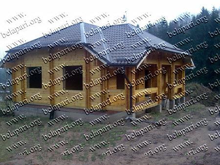 Cabane, vile, case de vacanta