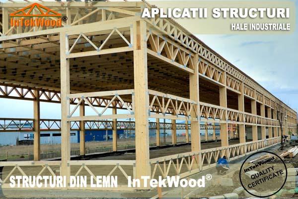 Producem case din lemn si structuri din lemn pentru constructii civile si industriale