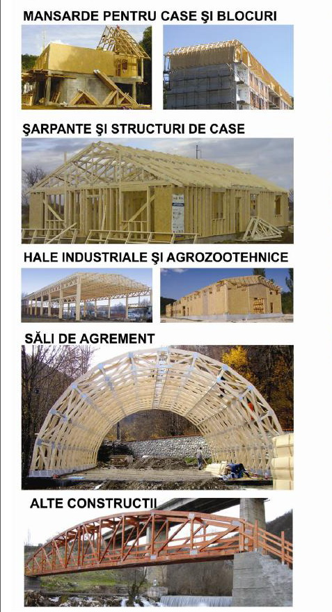 Case din Lemn si structuri din lemn pentru constructii civile si industriale