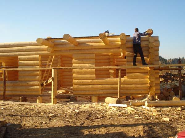 Vanzare case si cabane din lemn rotund for Case di legno romania