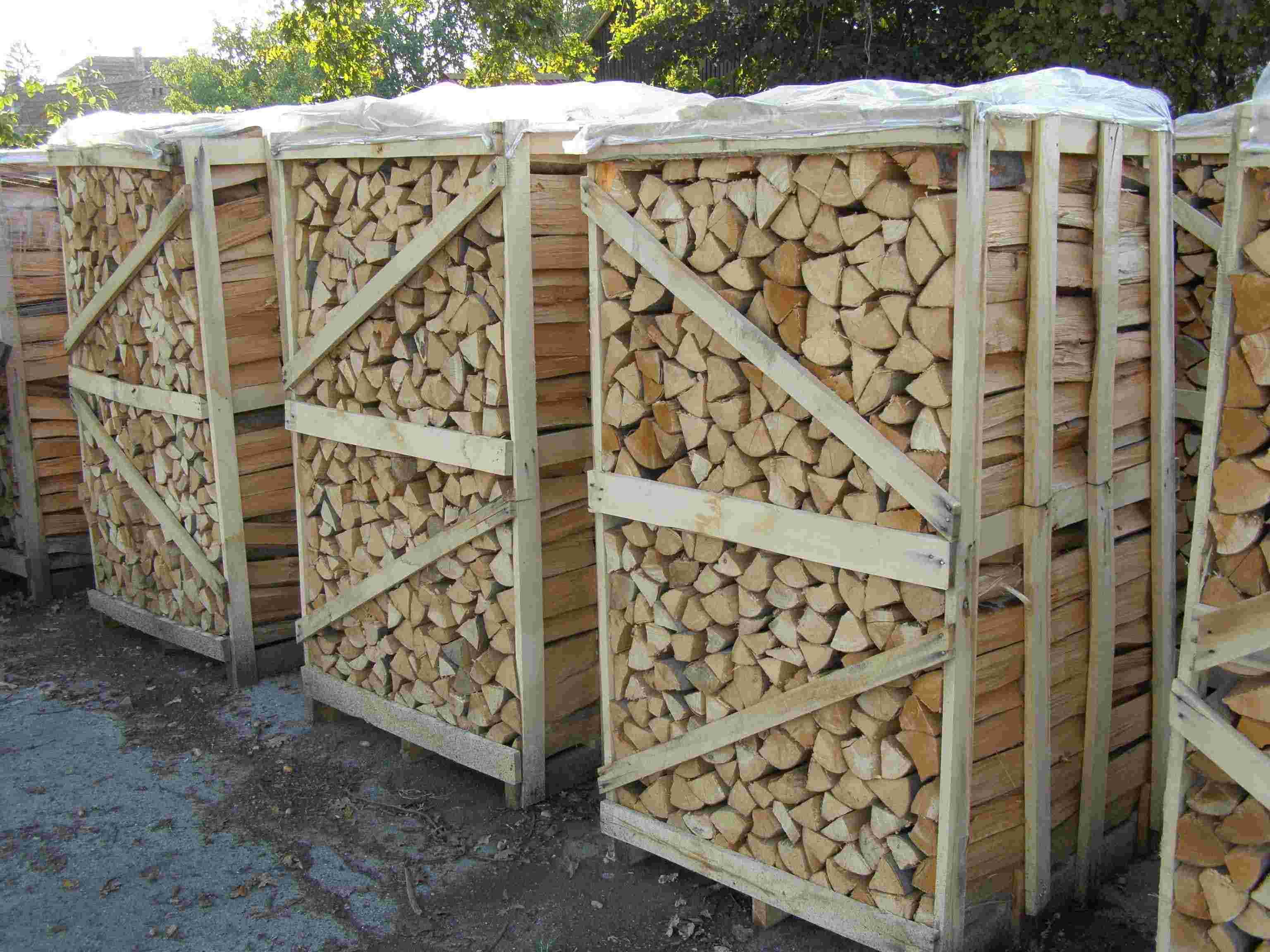 lemn de foc uscat de fag, carpen, stejar