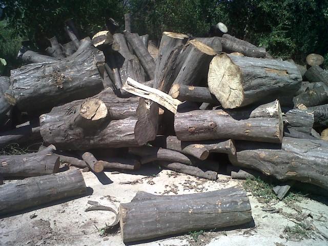 Vendita legna da ardere for Vendita legna da ardere