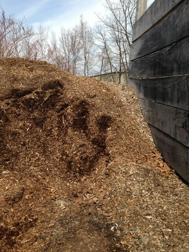 Wood Chips Good Prices