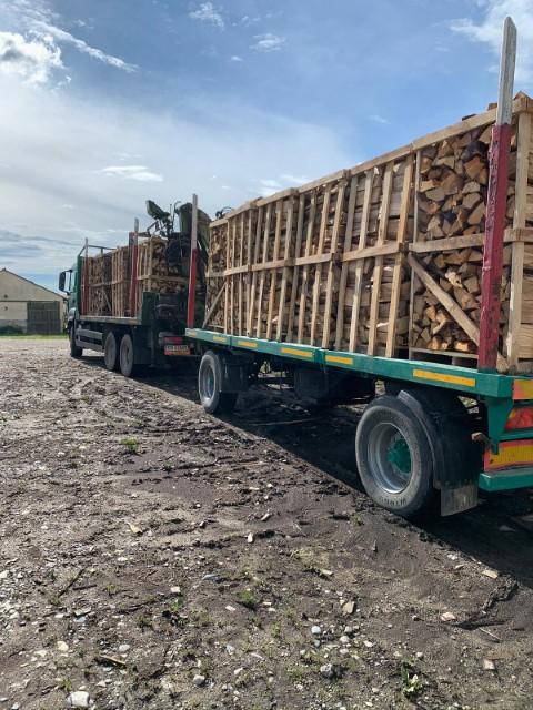 Vindem lemn de foc din fag sau stejar